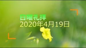 200419