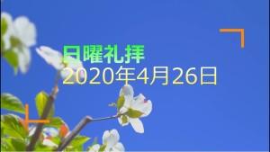 200426