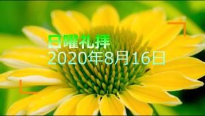 200816