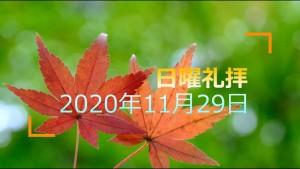 201129