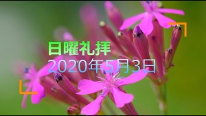 20200503